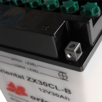 ZX30CL-B