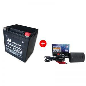 ZGX30HL-BS+充電器セット
