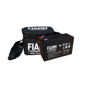 FGH20902 FIAMM製