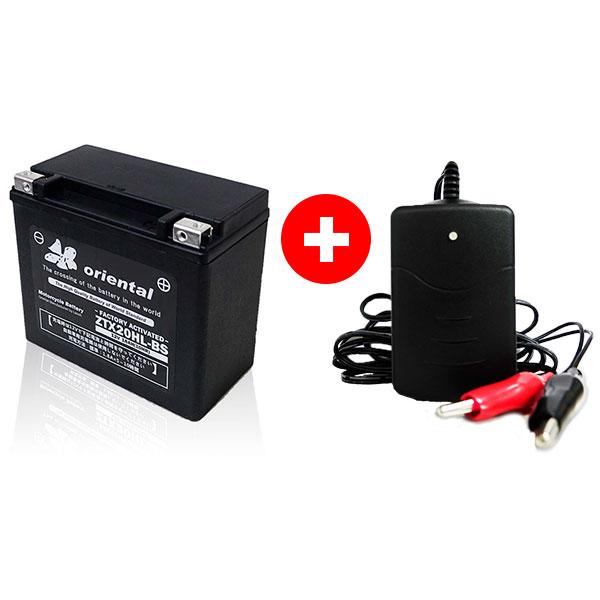 ZGX20HL-BS+充電器セット