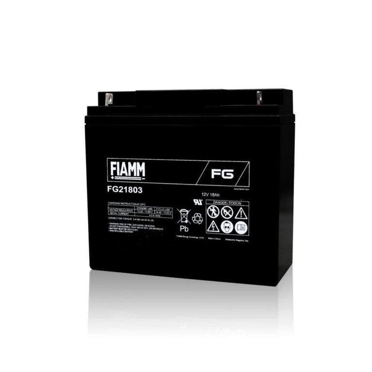 FG21803 FIAMM製