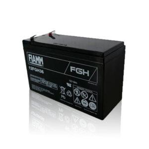 12FGH36 FIAMM社製